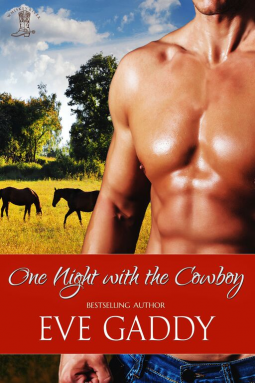 One Night with the Cowboy